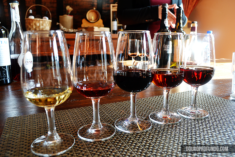 Introduction to Port Wine
