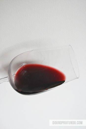 Introduction to Ruby Port Wine