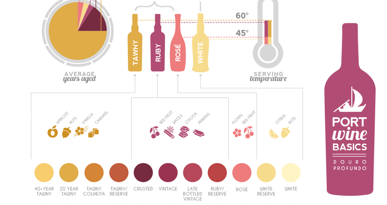 Port Wine Basics Infographic Douro Profundo